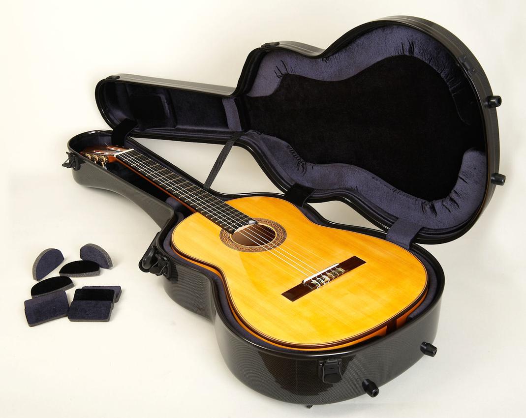 guitar cases bam carbon black case. Black Bedroom Furniture Sets. Home Design Ideas